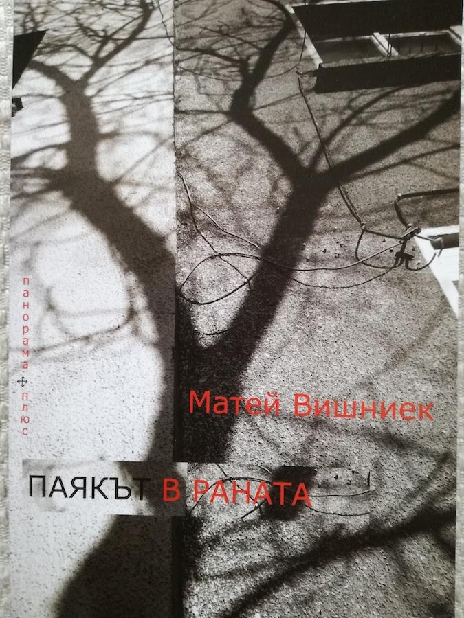 Book Cover: Паякът в раната